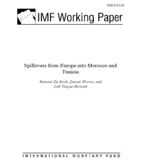 Spillovers from Europe into Morocco and Tunisia