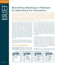 Branchless Banking in Pakistan: A Laboratory for Innovation