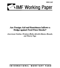 Are Foreign Aid and Remittance Inflows a Hedge against Food Price Shocks?